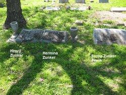 Henry Edward Zunker