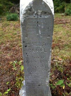 William Nelson Cahal