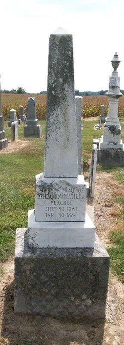 Mary E Peachee