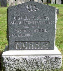 Charles Albert Norris