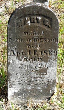 Mary E. Anderson