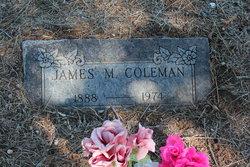 James Moses Coleman