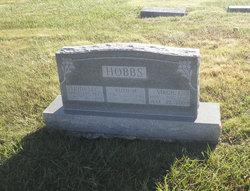 Virgil Lee Hobbs