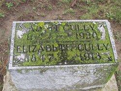 Elizabeth <i>Harrod</i> Cully