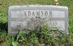 Erik P Adamson