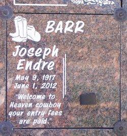 Joseph Endre Joe Barr