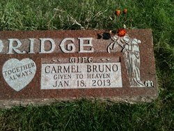Carmel A <i>Bruno</i> Aldridge