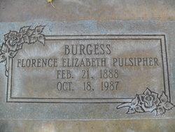 Florence Elizabeth <i>Pulsipher</i> Burgess