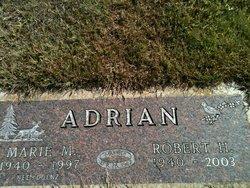 Robert H Adrian
