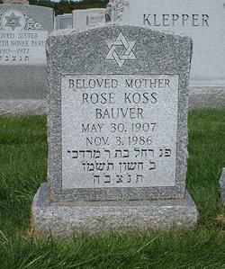 Rose <i>Koss</i> Bauver