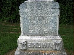 Sophronia M <i>Braybrooks</i> Brown