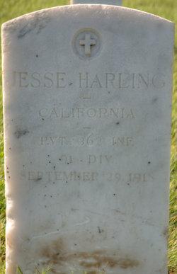 Jesse Harling