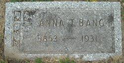 Anna T. Bang