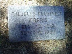 Theodore R Morris