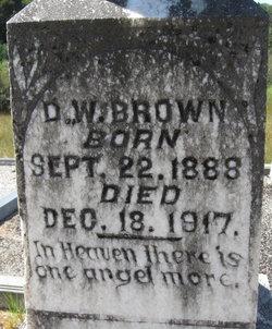 D W Brown