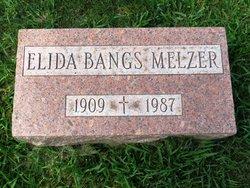 Elida <i>Friedman Bangs</i> Melzer