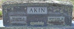 William Jackson Akin
