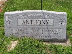 Bernice Ann <i>Howard</i> Anthony