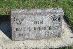 Dale I. Brunkhorst