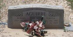 Teresa <i>Araujo</i> Aguirre