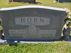 Luna <i>Stevens</i> Horn