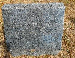 Lydia S <i>Shinn</i> Brouwer