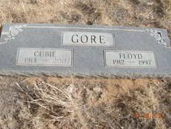 Cubie <i>Ridway</i> Gore