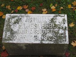 Bruce Arthur Westerbeck