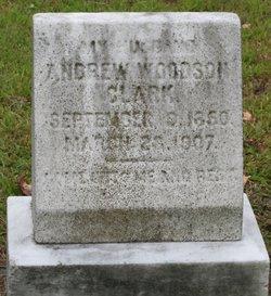 Andrew Woodson Clark