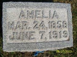 Amelia M. Pecht