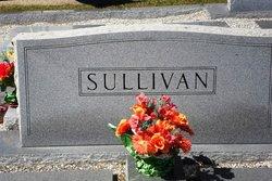 Nelle Hill Sullivan