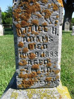 Ottice H. Adams