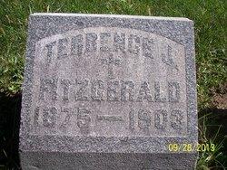 Terrence J. Fitzgerald