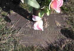 Theresa E Terry Ambrose