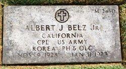 Albert J Belz, Jr