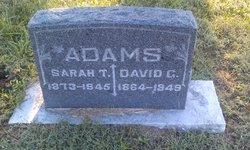 Sarah T. Adams