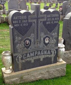 Antonina <i>Lima</i> Campagna