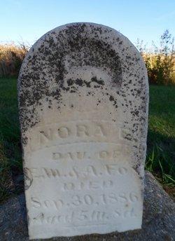 Nora E. Fox