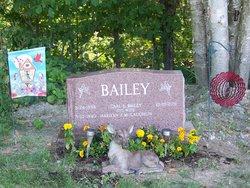 Carl L Bailey