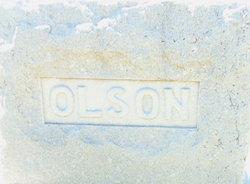 Mary S <i>Anderson</i> Olson