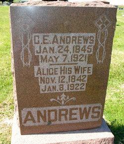 Alice Andrews