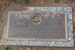 Anthony Branca