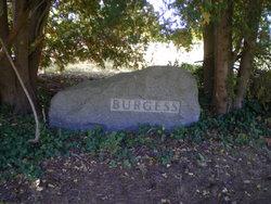 Justina M. <i>Hamblin</i> Burgess