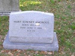 Mary <i>SOWNEY</i> Amorous