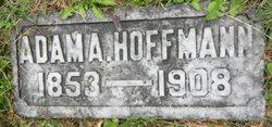 Adam Hoffmann