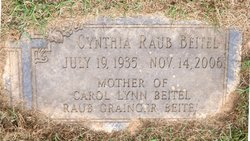 Cynthia <i>Raub</i> Beitel