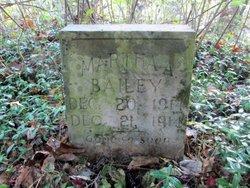 Martha A Bailey
