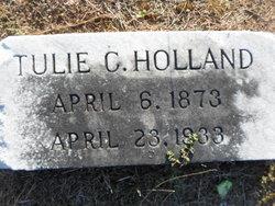 Cilla Catulia Tulie Holland