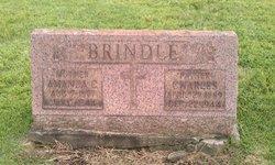 Amanda C. Brindle