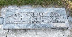 David Edmond Cahill